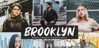 Free Brooklyn Lightroom Preset