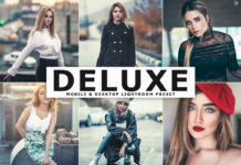 Free Deluxe Lightroom Preset