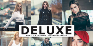 Free Deluxe Lightroom Preset