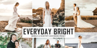 Free Everyday Bright Lightroom Preset