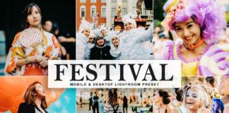 Free Festival Lightroom Preset