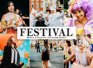 Free Festival Lightroom Preset