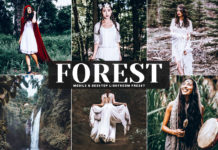 Free Forest Lightroom Preset