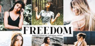 Free Freedom Lightroom Preset