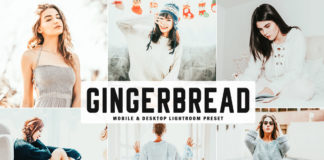 Free Gingerbread Lightroom Preset