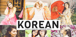 Free Korean Lightroom Preset