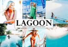 Free Lagoon Lightroom Preset
