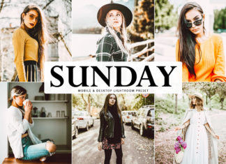 Free Sunday Lightroom Preset