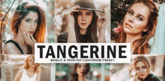 Free Tangerine Lightroom Preset