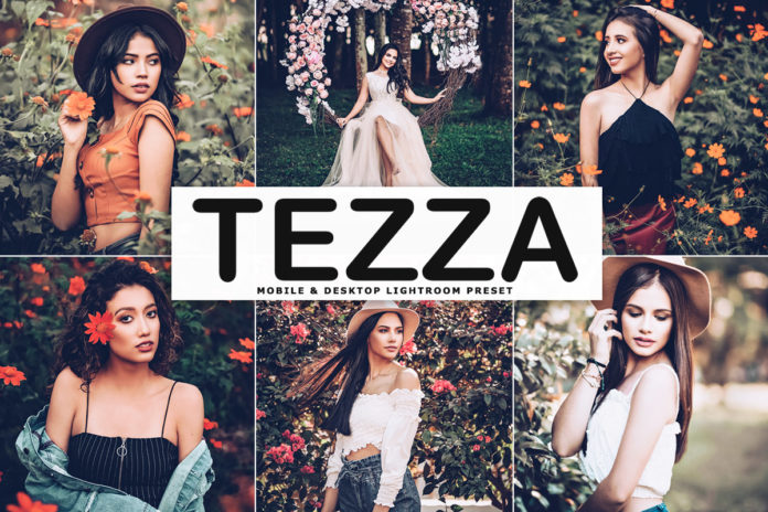 Free Tezza Lightroom Preset