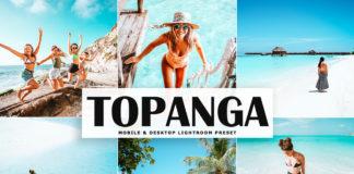 Free Topanga Lightroom Preset
