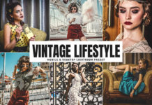 Free Vintage Lifestyle Lightroom Preset