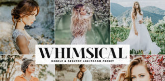 Free Whimsical Lightroom Preset