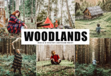 Free Woodlands Lightroom Preset