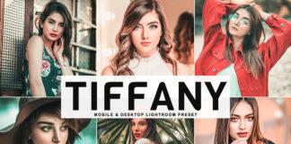 Free Tiffany Lightroom Preset