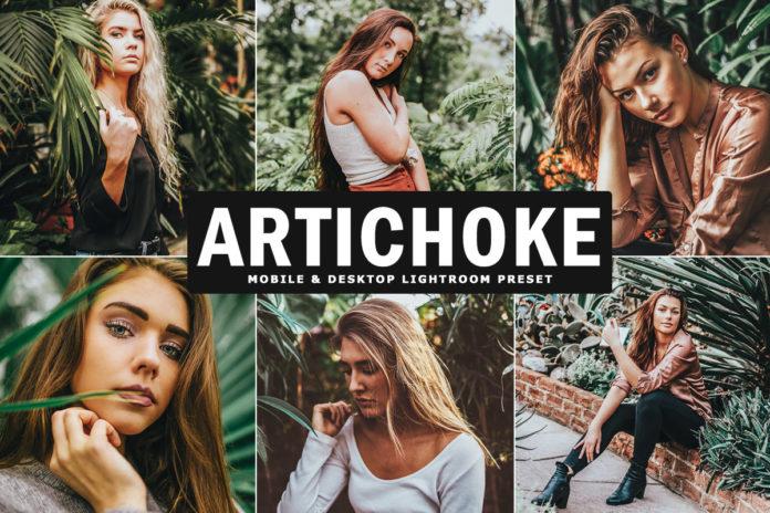 Free Artichoke Lightroom Preset