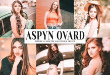Free Aspyn Ovard Lightroom Preset
