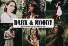 Free Dark & Moody Lightroom Preset