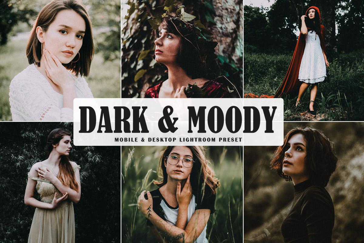 Free Dark & Moody Lightroom Preset