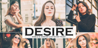 Free Desire Lightroom Preset