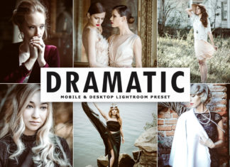 Free Dramatic Lightroom Preset