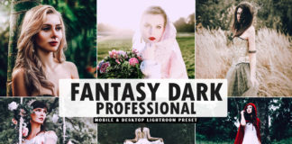 Free Fantasy Dark Pro Lightroom Preset