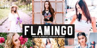 Free Flamingo Lightroom Preset