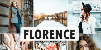 Free Florence Lightroom Preset