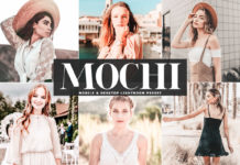 Free Mochi Lightroom Preset