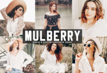 Free Mulberry Lightroom Preset