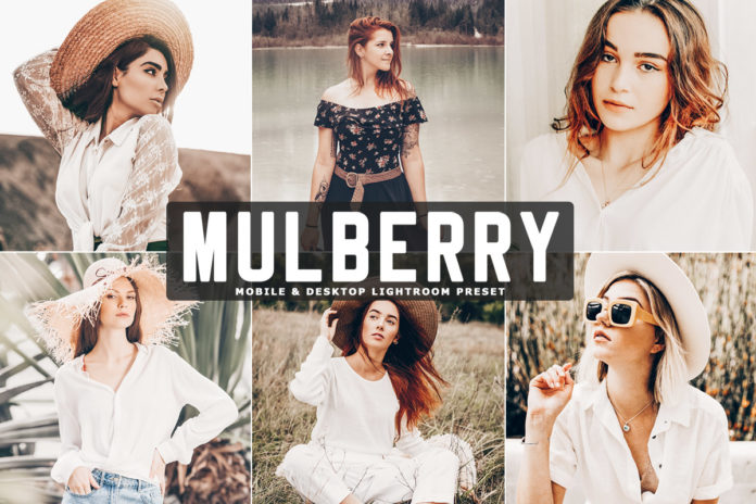 Free Mulberry Lightroom Preset