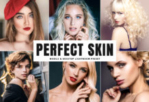 Free Perfect Skin Lightroom Preset