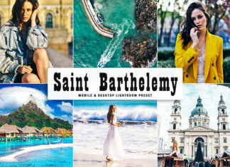 Free Saint Barthelemy Lightroom Preset