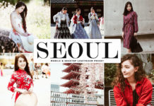 Free Seoul Lightroom Preset