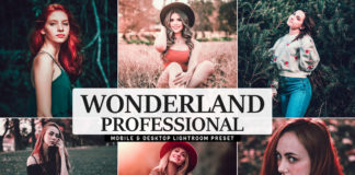Free Wonderland Pro Lightroom Preset