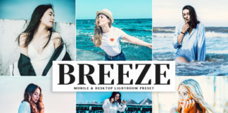 Free Breeze Lightroom Preset