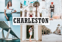 Free Charleston Lightroom Preset