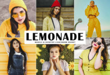 Free Lemonade Lightroom Preset