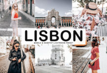 Free Lisbon Lightroom Preset