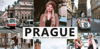Free Prague Lightroom Preset