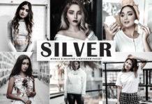 Free Silver Lightroom Preset