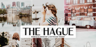 Free The Hague Lightroom Preset
