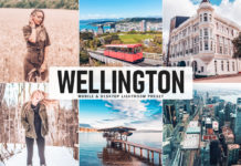 Free Wellington Lightroom Preset