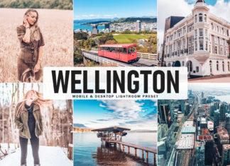 Free Wellington Lightroom Preset