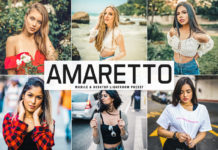 Free Amaretto Lightroom Preset