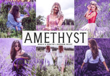 Free Amethyst Lightroom Preset