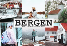 Free Bergen Lightroom Preset