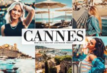 Free Cannes Lightroom Preset
