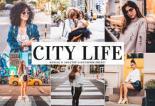 Free City Life Lightroom Preset