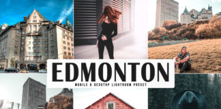 Free Edmonton Lightroom Preset